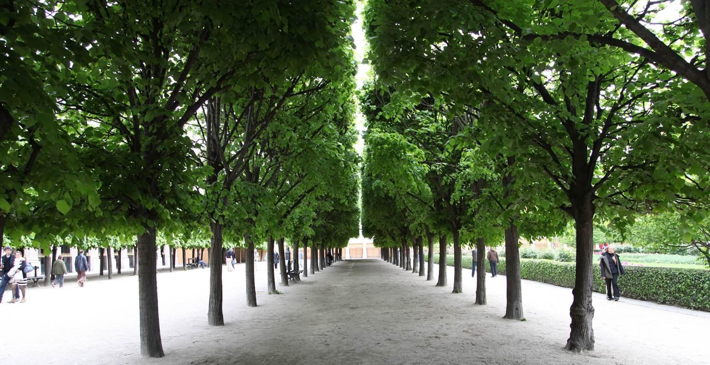 Jardin du palais royal 3 la seinographe - Deco jardin nice rue barla versailles ...