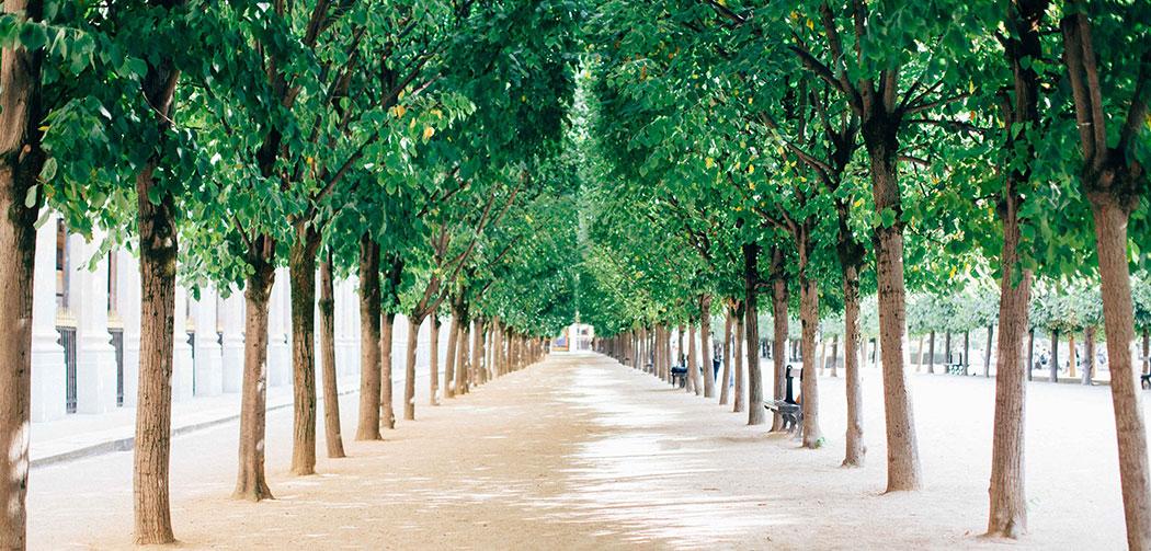Balade parisienne dans le quartier du palais royal - Deco jardin nice rue barla versailles ...